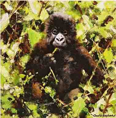david shepherd baby gorillas print