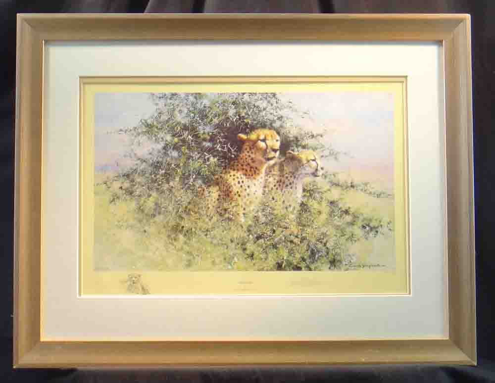 david shepherd cheetah, print framed