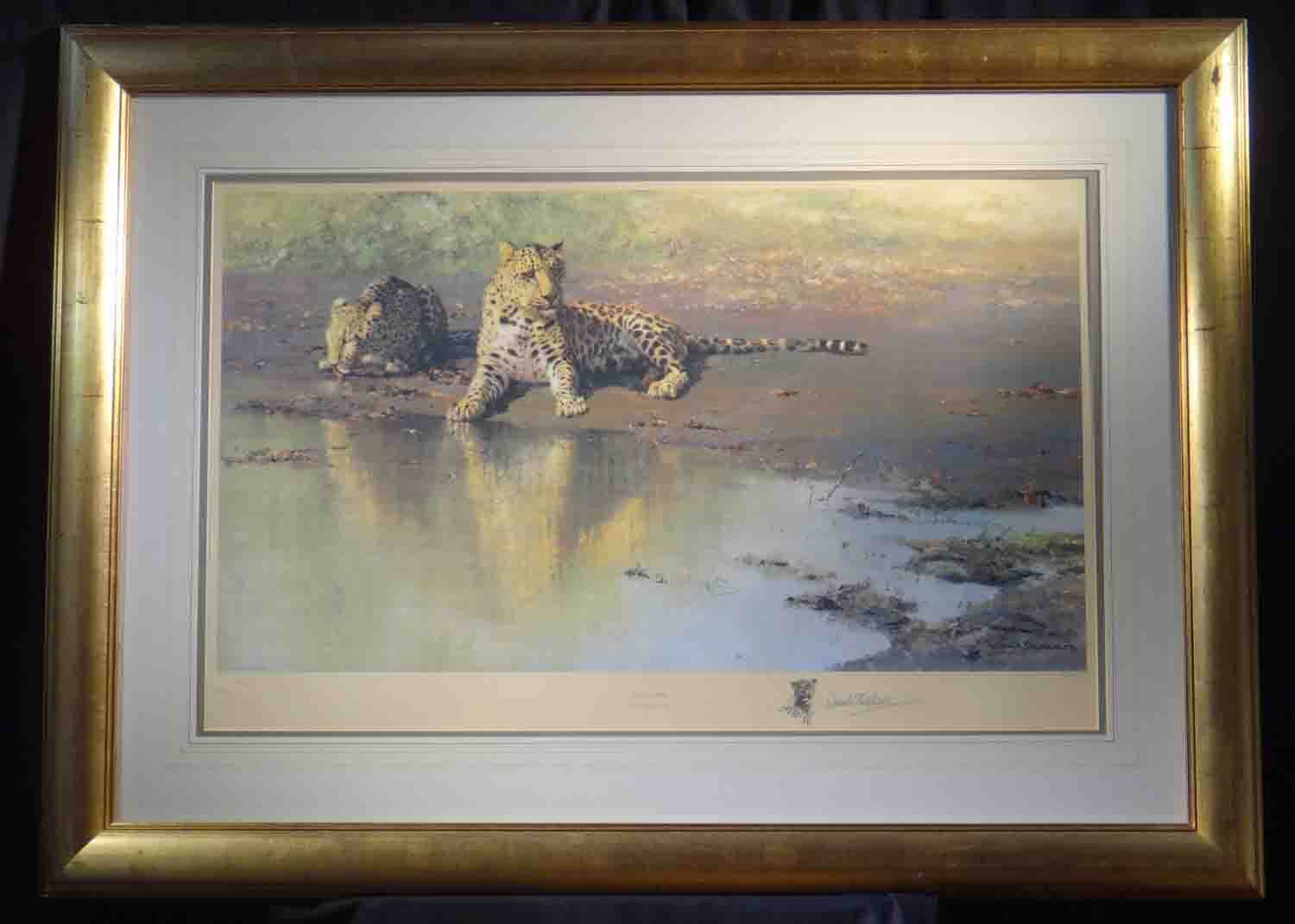 david shepherd cool waters, leopards