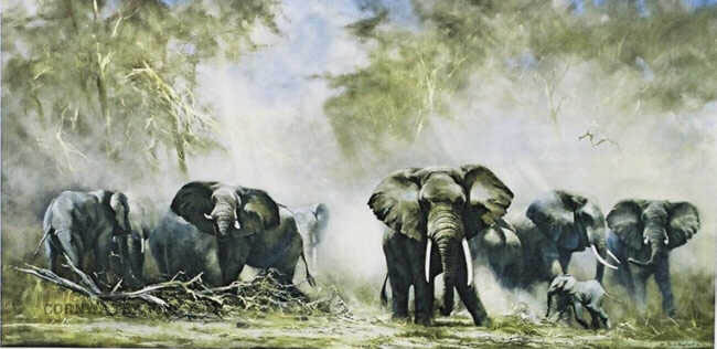 david shepherd  elephants at Amboseli print