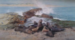 david shepherd elephant seals signed print