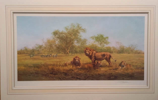 david shepherd evening in the Luangwa, print
