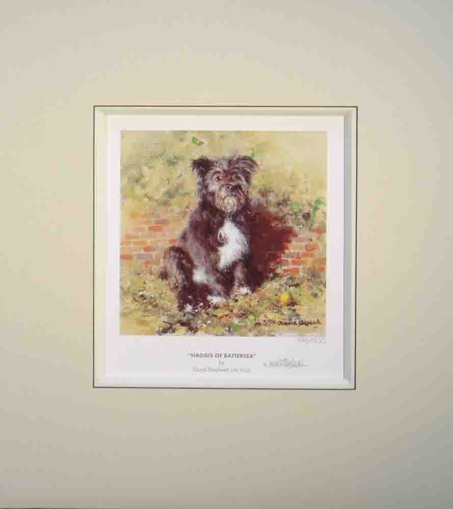 shepherd Haggis of Battersea dog signed print mounted