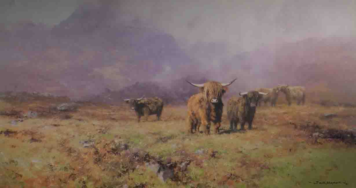 david shepherd, Highland Cattle, print
