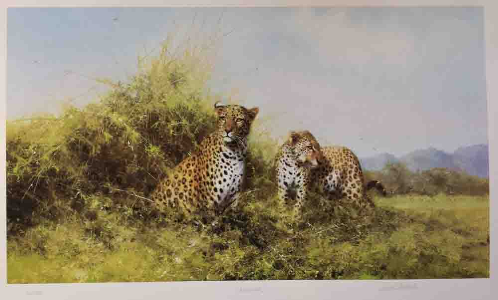 david shepherd, Leopards, silkscreen, print