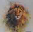 david shepherd lion cameo print