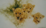 david shepherd lion cubs print