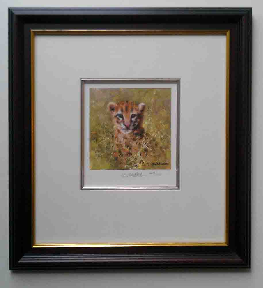 david shepherd ocelot cub cameo framed