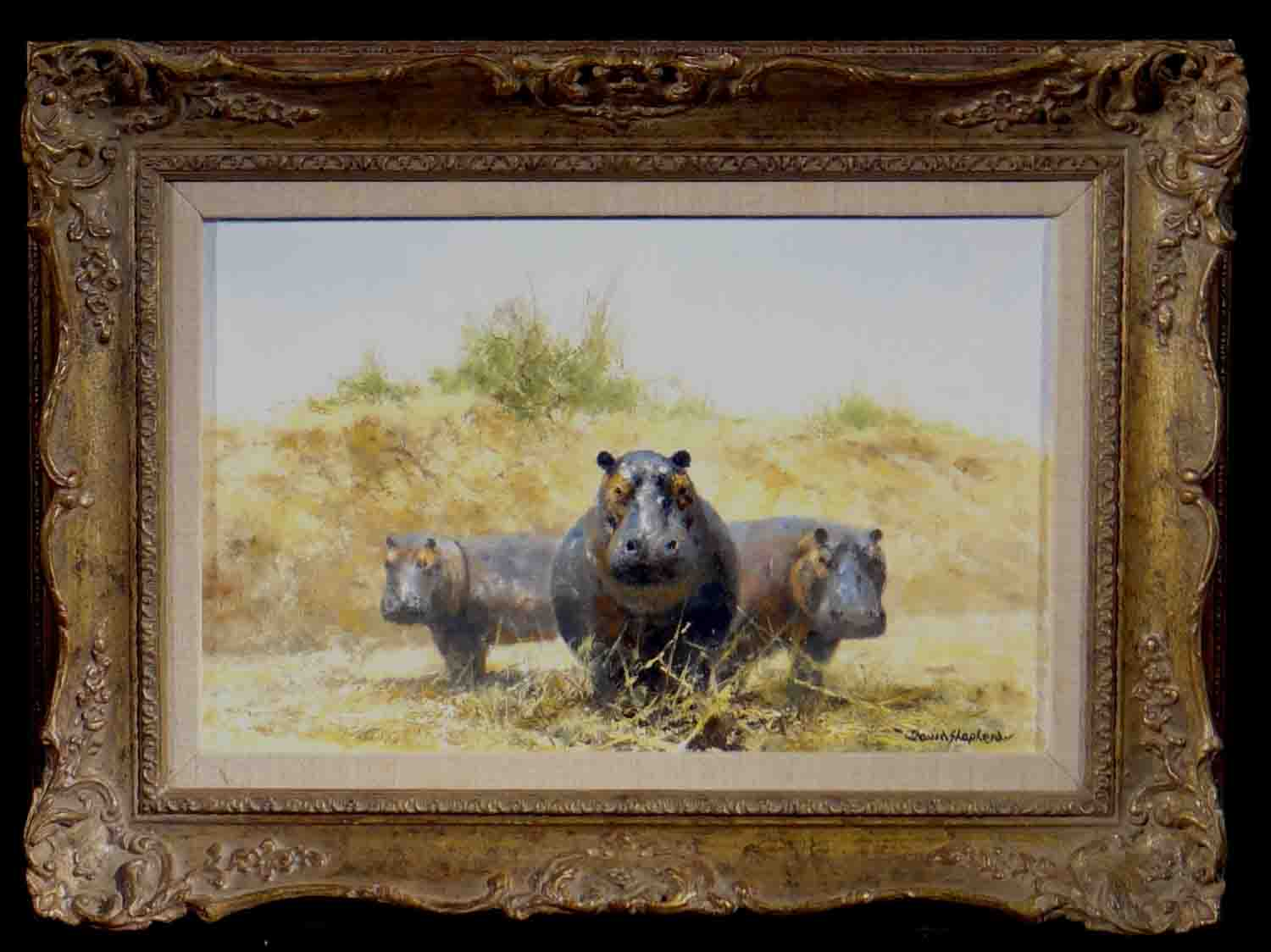 david shepherd original, Hippos