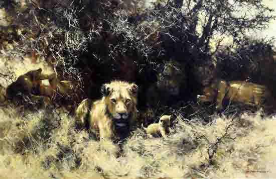 david shepherd lions original sold