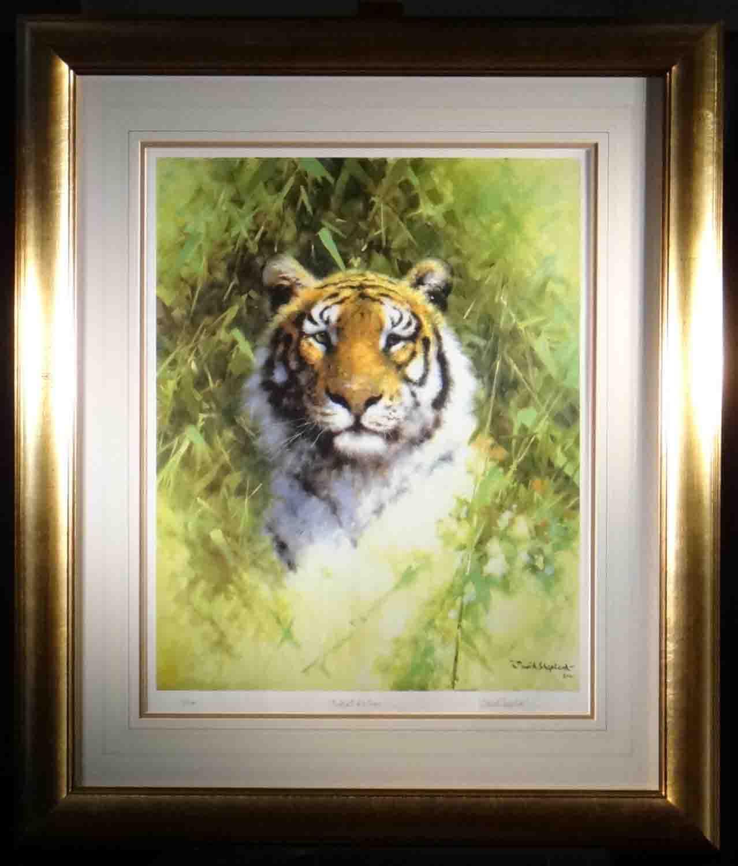 david shepherd Portrait of a Tiger