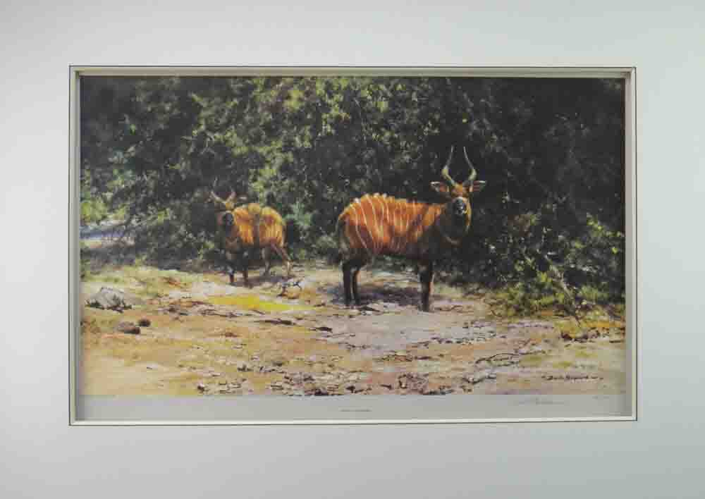 david shepherd african afternoon mounted