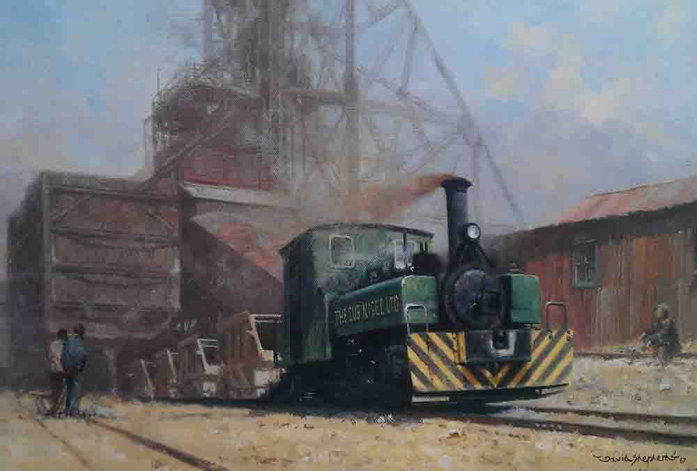 david shepherd sub-nigel mine