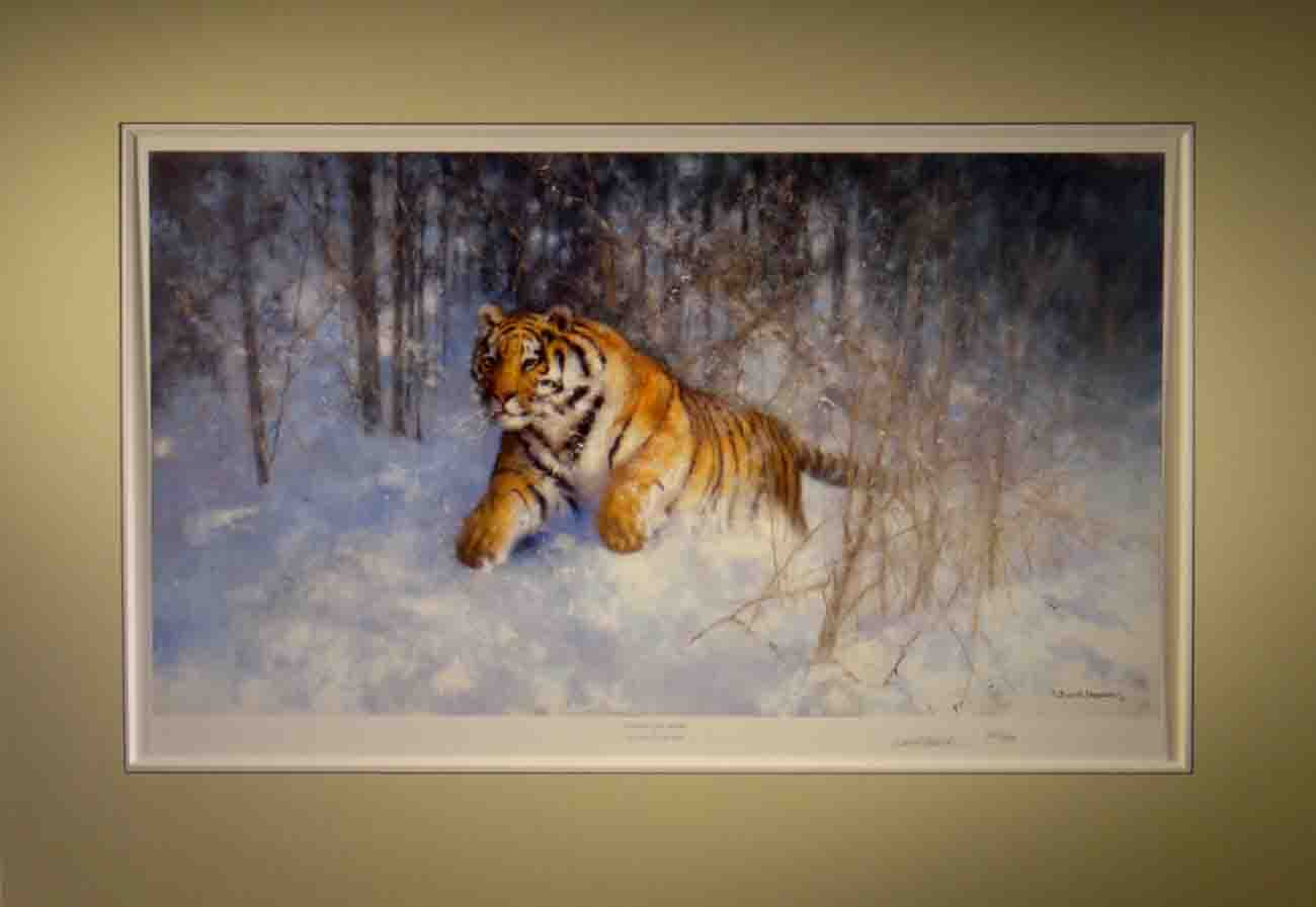 david shepherd Tiger in the snow, signed limited edition print