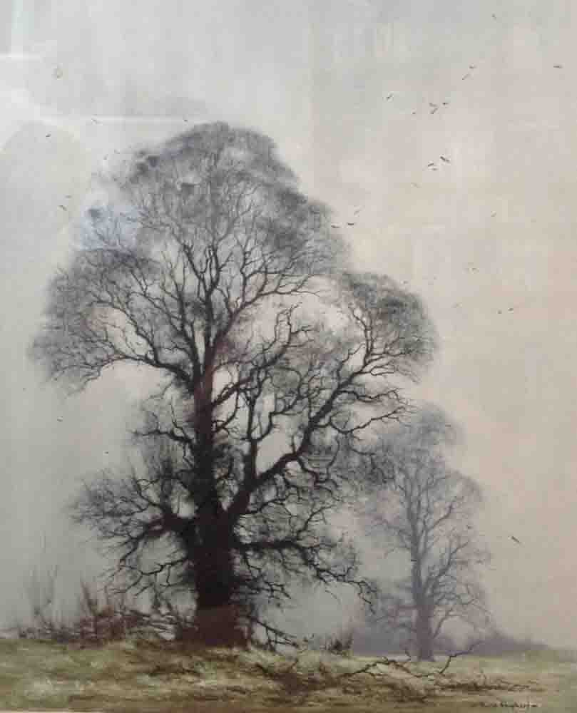David Shepherd, winter elms,  print